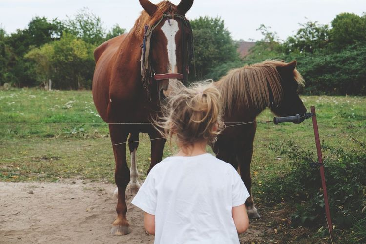 Rear View Of Girl Looking At Horses In Ranch