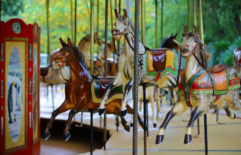 A Merry-Go-Round that, at the time wasn't working, but I easily picture in my mind, the up beat music, flashing lights & the sound of laughter, no to mention smiling faces, young & old. Amusement Park Ride Bright Colours Childhood Memories EyeEmNewHere Horses Merry Go Round Metal Poles Static Display Turning Ride Up And Down Wooden Deck