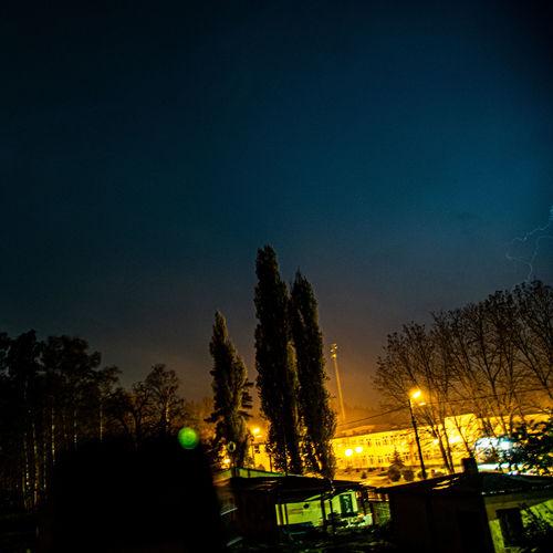 Silhouette trees against illuminated sky at night