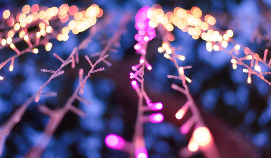 Illuminated Led