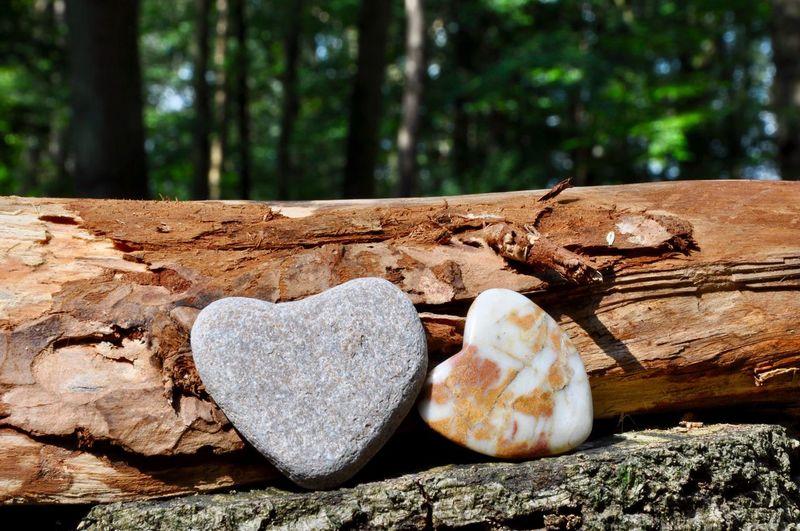 Love! Heart