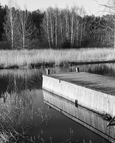 Reflections EyeEm Best Shots Eye4photography  Monochrome Blackandwhite Bw_collection