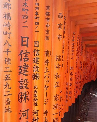 Morning walk 🏃🏃🏃 Fushimiinaritaisha Kyoto Senbontorii TORII Temple Tradition Explore Kyoto Japan Wanderlust Explorekyoto Architecture The Architect - 2016 EyeEm Awards My Favorite Photo Ultimate Japan