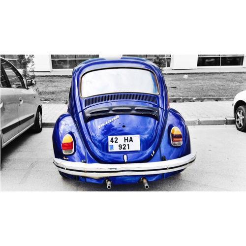 Kto Karatay üniversitesi Woswos Woswosaşk Mavi Woswos VW Beetle VW Beetle Volkswagen Beetle