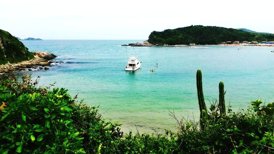 Praia das Conchas Tree Beach Moored Sand Horizon Over Water Plant Boat Seascape First Eyeem Photo