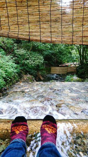【Kyoto,Japan】Kib