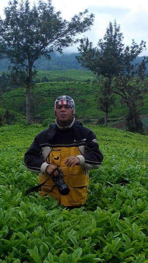 Indah nya alam bandung selatan. perkebunan teh malabar ??✌