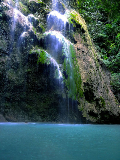 Rock Tumalog Falls Waterfalls And Calming Views  Beauty In Nature Environmental Conservation Forest Moss Moss Rock Motion Nature No People Rock - Object Rocks Rocks In Water Rocky Mountains Scenics Tranquil Scene Tree Water Water Flows Waterfall Waterfall Photography Waterfall Trip Waterfall_collection Waterfront
