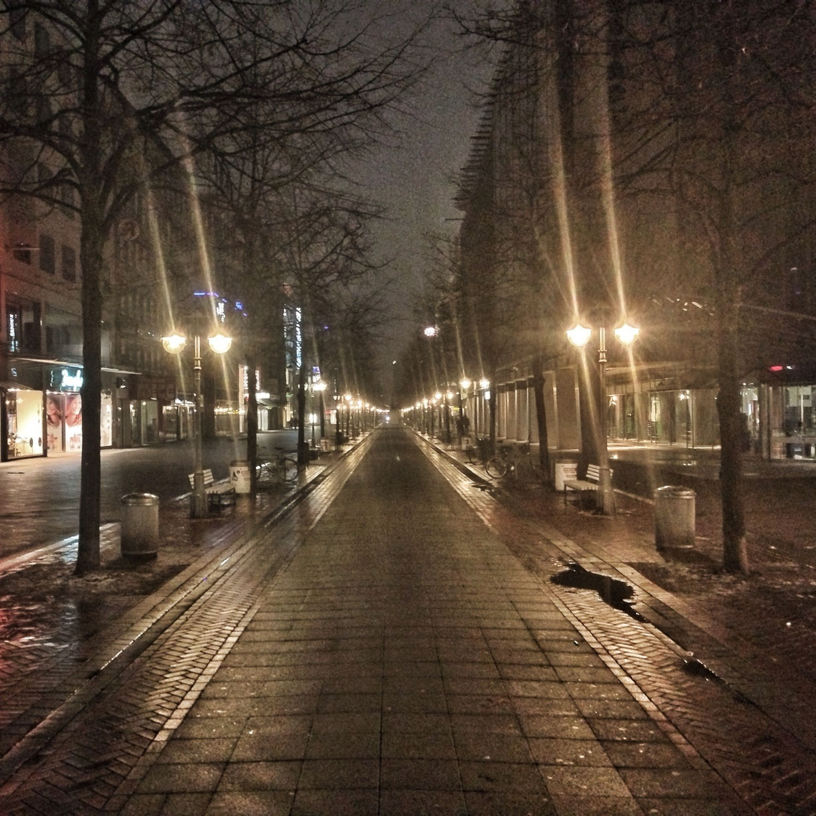 the way forward, illuminated, transportation, street light, night, diminishing perspective, tree, city, vanishing point, bare tree, building exterior, street, lighting equipment, built structure, architecture, road, empty, outdoors, car, mode of transport