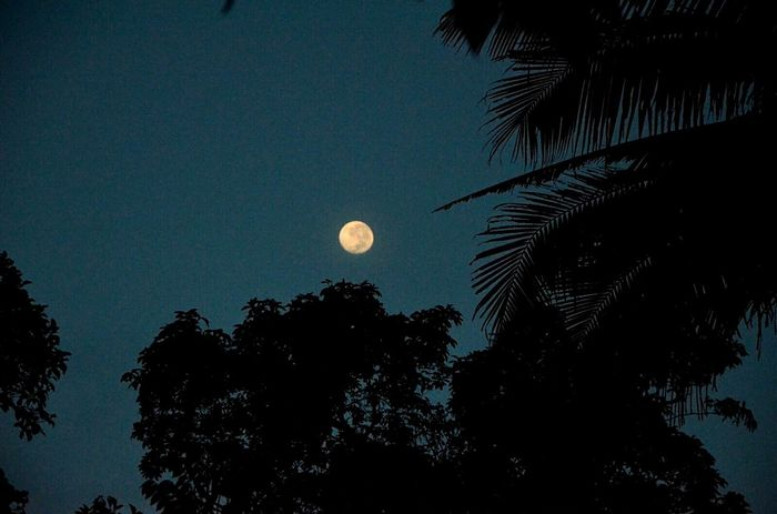 Moonlover <3 Evening Sky