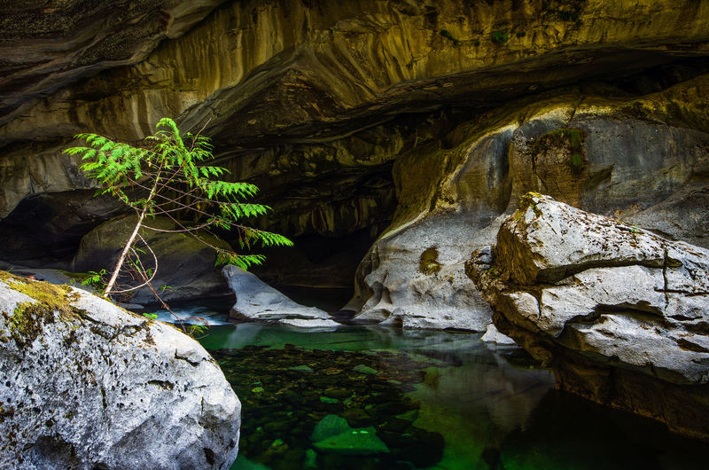 Little Husan Caves, near Woss, British Columbia Rock Solid Rock - Object Rock Formation Beauty In Nature Cave Nature Geology Water Tranquility No People Physical Geography Non-urban Scene Day Stalactite  Rough Scenics - Nature Eroded Outdoors Flowing Caves Photography