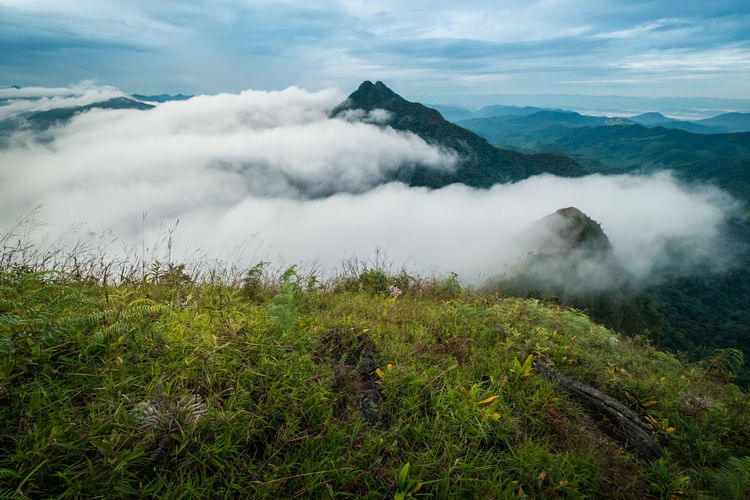 Beauty In Nature Scenics - Nature Cloud - Sky Sky Plant Mountain Tranquil Scene Tranquility Landscape Non-urban Scene Environment Nature Green Color Land No People Day Growth Fog Idyllic Remote Outdoors Volcanic Crater Travel Travel Destinations Foggy