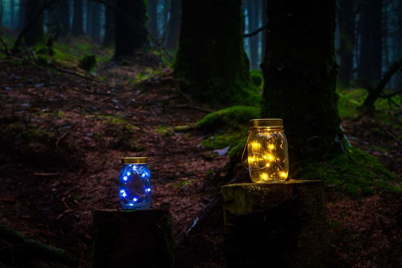 Isle Of Man Cringle Plantation Long Exposure Illuminated Tree Land No People Lighting Equipment Nature Focus On Foreground Plant Forest Night Container Close-up Outdoors Glowing Field Decoration Lantern Blue Glass - Material HUAWEI Photo Award: After Dark HUAWEI Photo Award: After Dark