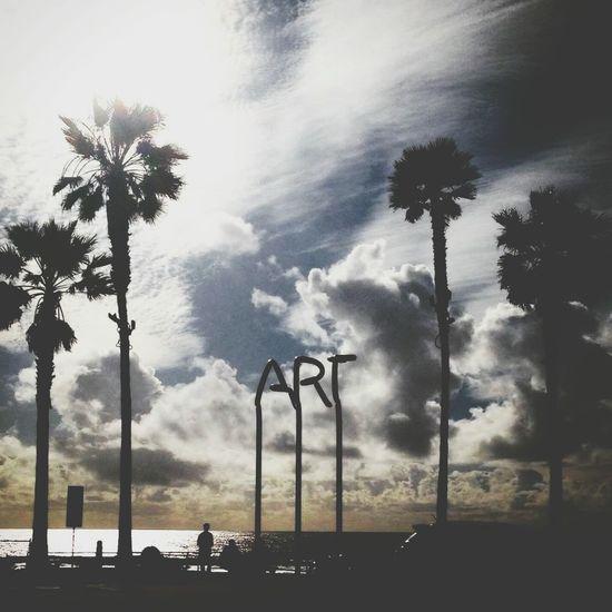 Palm Tree Tourism Palm Trees San Diego Imperial Beach Beach Photography Beach Sky Clouds Art Outdoors