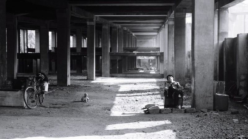 Built Structure One Man Only Architectural Column Dog Watchman Light And Shadow Black And White Blackandwhite Pattern Urban Landscape Urbanscape Asleep In The Street Asleep One Person The Graphic City