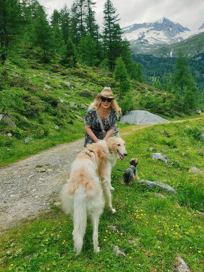 Full length of a dog on landscape