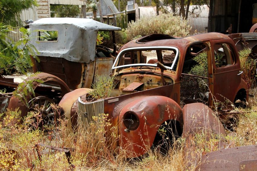 The final resting place for two old cars Abandoned Bad Condition Car Damaged Day Destruction Deterioration Discarded Field Grass Land Vehicle Mode Of Transport No People Obsolete Outdoors Plant Rotting Run-down Rusting Rusty Scrap Metal The End Transportation Weathered