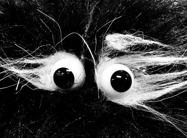 Eyes Black & White
