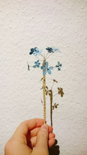Holding Person Wall - Building Feature Flower Part Of Stem Close-up Flower Arrangement Personal Perspective Human Finger Freshness Fragility Botany Nailpolish Blue Light Blue