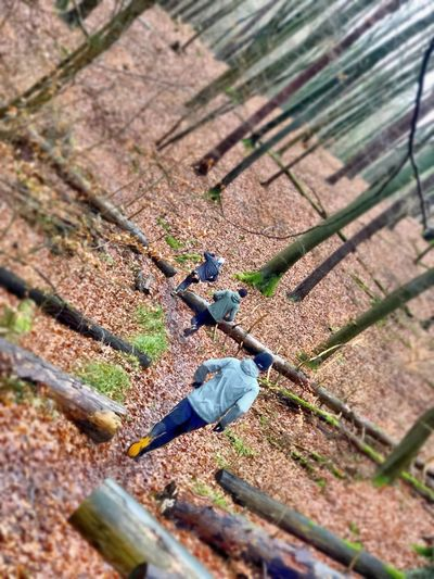 High angle view of man climbing on field in forest