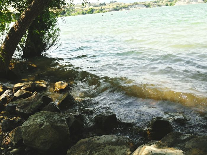 Water Nature Outdoors No People Sea Beach Day Beauty In Nature Wave High Angle View Nature Beachphotography UnderSea Sea Life Shore Waterfront Rocks And Water Rocks Wave Beauty In Nature Freshness Shiny The Week On EyeEm