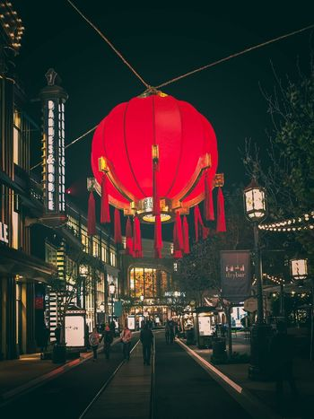 year of the dog Chinese New Year Night Architecture Illuminated Built Structure City Building Exterior Red Chinese Lantern Lantern
