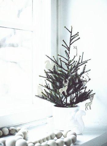 HELLO CHRISMAS? Chrismaseve Christmas Christmas Tree Chrismas Eve