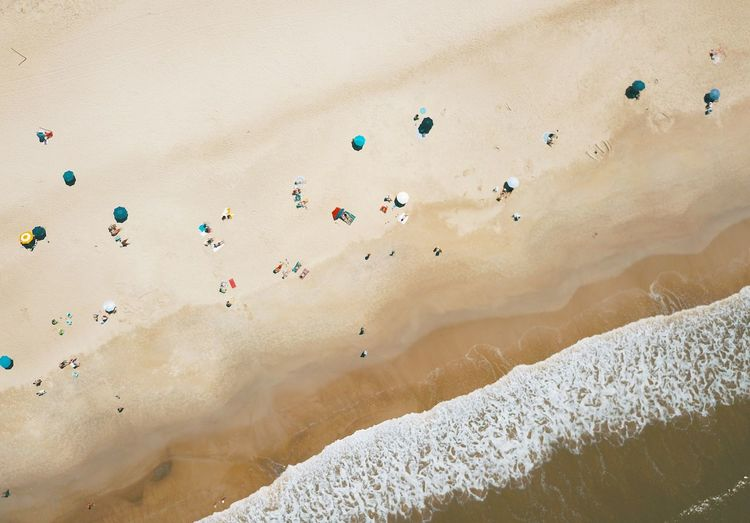 High angle view of sun umbrellas in beach by the sea