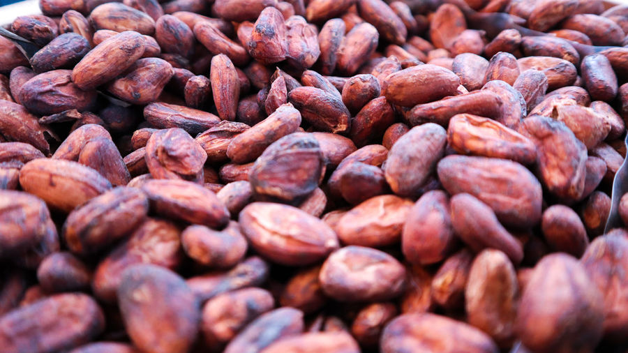 Cocoa seeds.