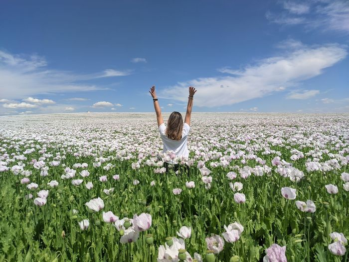 Person on flowering plant on field against sky