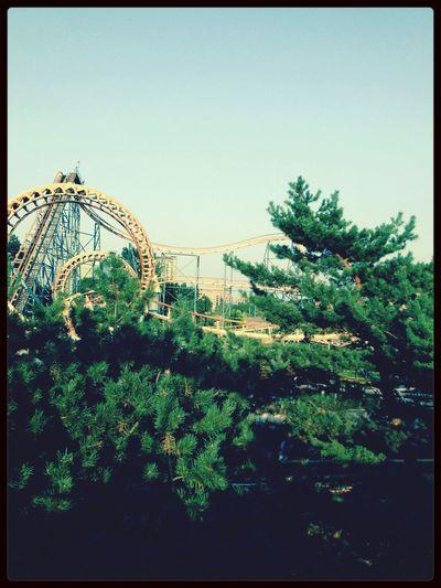 Roller Coaster Fun Scary