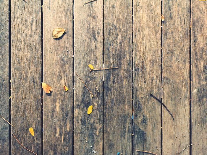 Background Backgrounds Full Frame Textured  Wood - Material Pattern Close-up Plank Wood Grain Hardwood Oak Tree Floorboard Pine Wood Carpentry Nail Wood Wood Paneling Wooden A New Beginning