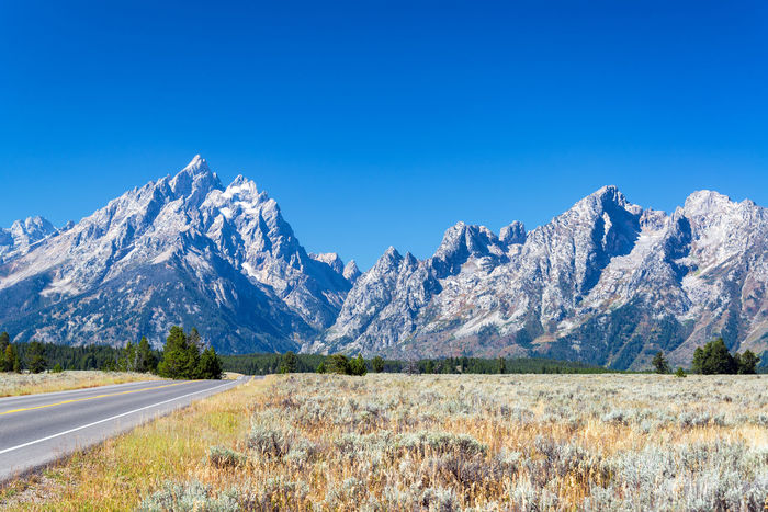 View of Teton Range and highway in Grand Teton National Park Alpine Bear Jackson Montana National Park Parks Scenic Travel Tundra USA Wanderlust Wyoming Beartooth Destination Forest Grandtetonnationalpark Higway Hole Landscape Lodge Mountain Peaks Range Valley Wilderness