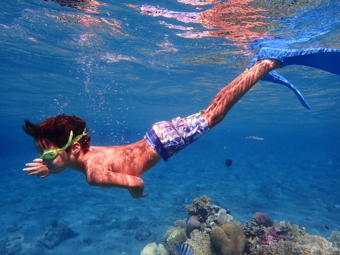 Coral Vacations Holiday Childhood Boy Water Sea One Person Underwater UnderSea Real People Lifestyles Nature Leisure Activity Swimming Marine