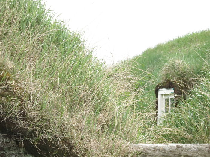 Architecture Built Structure Grass Roof Lawn Sustainability Turf Houses Turf Roof Window