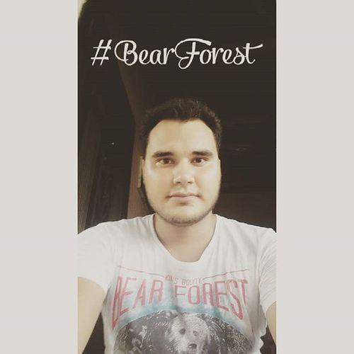 BearForest Festivo ✌😎