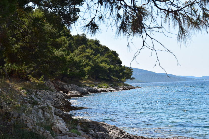 Beauty In Nature Clear Sky Croatia Croatiafulloflife Day EyeEm Nature Lover EyeEmNewHere Forest Landscape Mountain Nature Nature No People Outdoors Scenery Scenics Sea Sky Stones & Water Summertime Tranquil Scene Tranquility Travel Destinations Tree Water