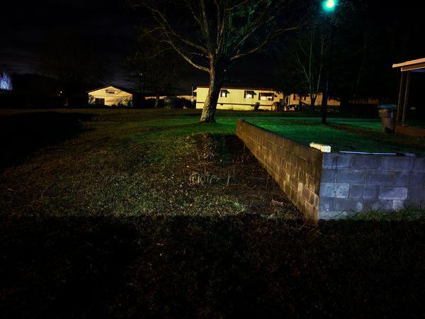 Night Outdoors No People Grass Illuminated Tree