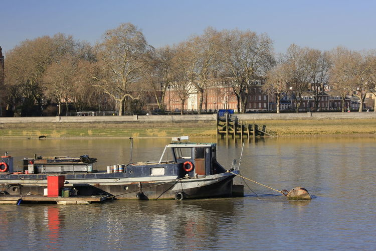 Moored Riverside Photography River View River Reflections In The Water Reflections Moored Boat River Thames River Thames Bank Tree Nautical Vessel Water Moored Clear Sky Boat Waterfront Calm Motorboat