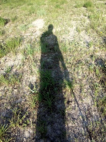 Shadows Shadow Play Shadow Time Light And Shadows Sunny Day Walking On Sunshine Open Field Photography Play