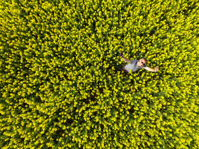 High angle view of man lying in farm