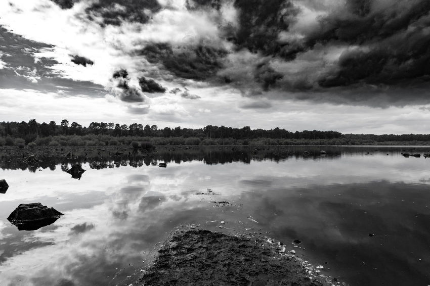 Crazy clouds above a lake at Delamere Forest // Reflection Cloud - Sky Sky Water Outdoors No People Nature Tree Scenics Day Large Group Of Animals Beauty In Nature Clouds And Sky Walk Forest Trees Reflections Outdoor Photography Water Reflections Delamereforest EyeEm Gallery Low Angle View Reflection Landscape Beauty In Nature