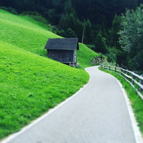 Pathway By Grassy Hill