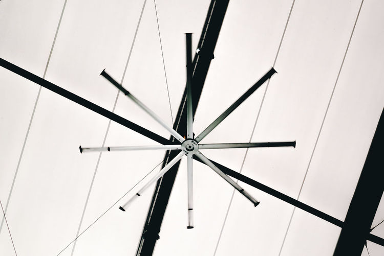 High angle of the giant fan and roof