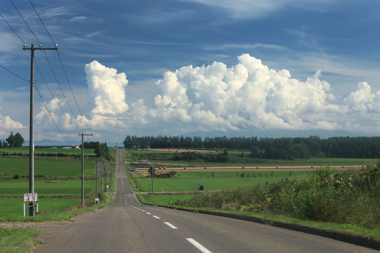 landscape japan hokkaido memanbetsu Cloud - Sky Connection Day Diminishing Perspective Direction Electricity  Electricity Pylon Environment Field Land Landscape Marking Nature No People Outdoors Plant Power Supply Road Road Marking Sign Sky The Way Forward Transportation