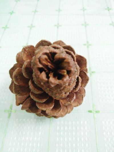 Beautiful Beauty In Nature Useful Things Pinecones Pine Cone Close Up Pine Cones Bronze Colour Nature