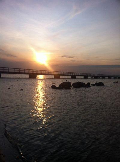 Malmö Skåne Beuty Of Skåne Beautiful Sunset