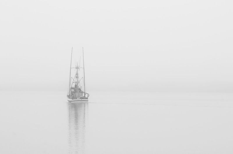 Single crab boat sails into the fog going out to sea Going Fishing Black And White Boat Boat Cold Morning Crab Boat Day Fog Foggy Foggy Morning Going To Work... Mast Monochrome Fog Nature Nautical Vessel No People Outdoors Sailboat Sailing Sea Sky Studio Shot Transportation Water Waterfront White Background