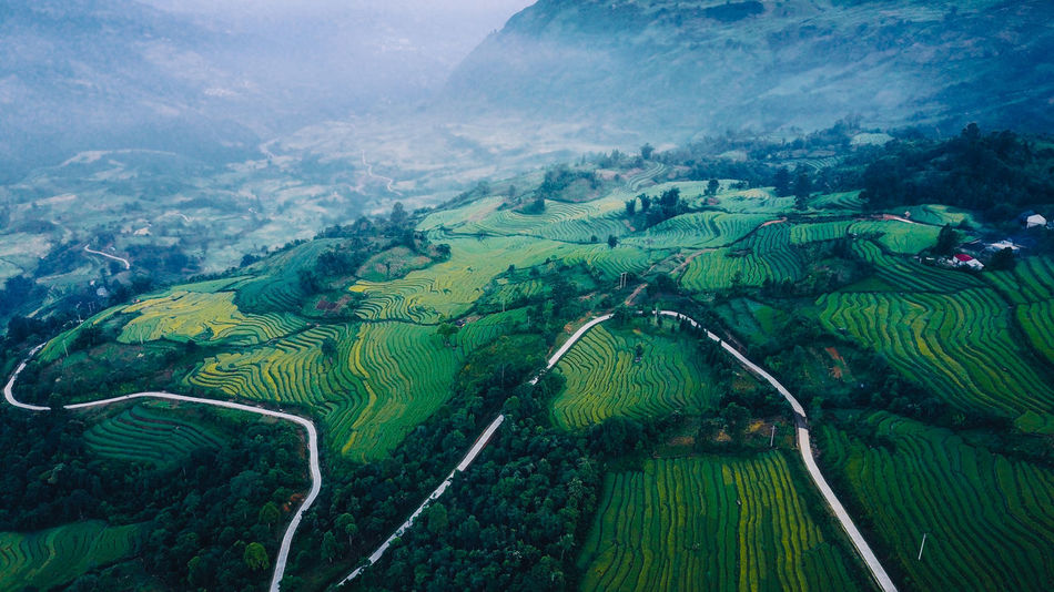 Been There. Aerial View Agriculture Beauty In Nature Day Field Flying Green Color Landscape Mountain Nature No People Outdoors Patchwork Landscape Rice Paddy Rural Scene Scenics Sky Tranquil Scene Tranquility Tree