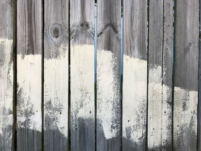 White washed paint on fence palings Painted Paling Fence EyeEm Selects Wood - Material Day Close-up No People Backgrounds Textured  Built Structure